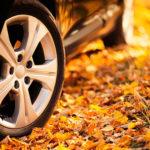 Советы по вождению осенью